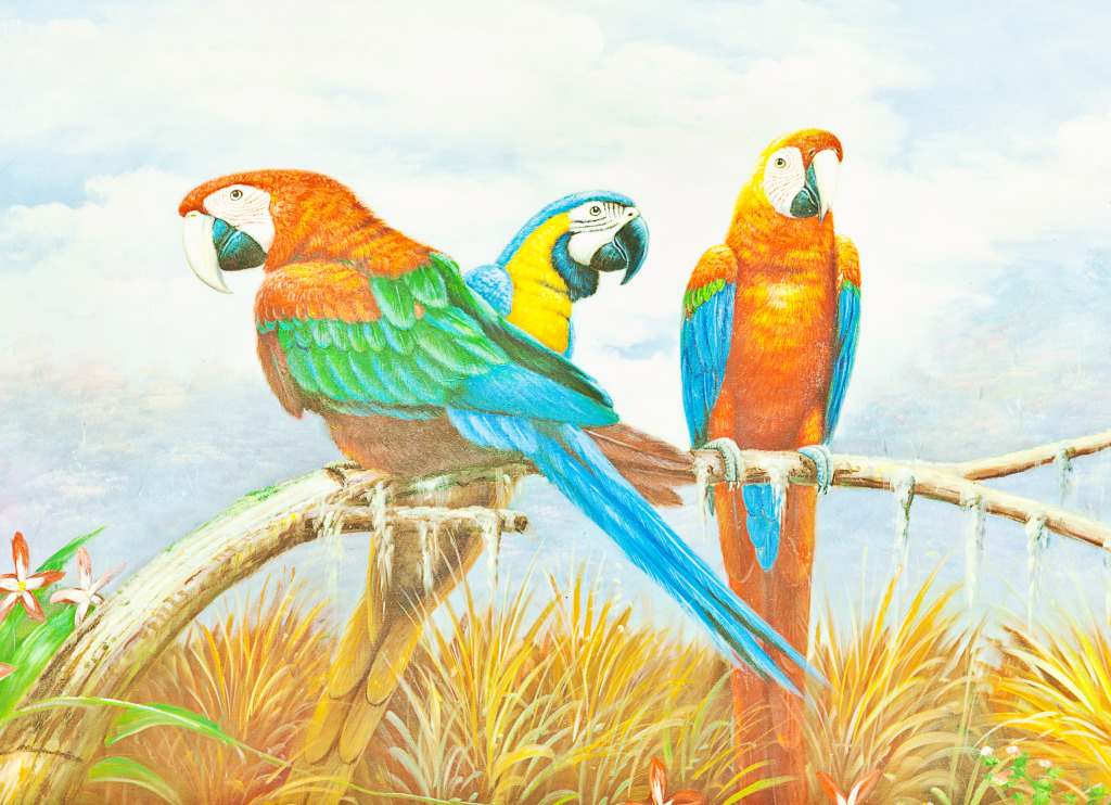 colorful macaw parrots jigsaw puzzle in animals puzzles on