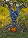 Upside Down Scarecrow