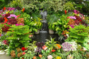 Tropical Garden with Colorful Flowers