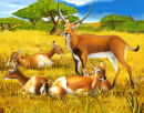 Antelopes in Kenya