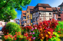 Flowers in Colmar, France