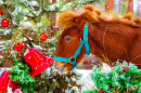 Redhead Pony near a Christmas Tree