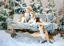 Beagle Dogs near the Christmas Tree