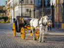 Horse Carriage In Seville, Spain