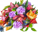 Colorfull Bouquet