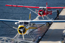 Beaver Float Planes in Vancouver