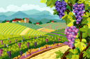 Vineyard and Grape Bunches