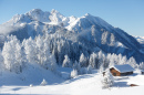 Winter Wonderland, Austrian Alps