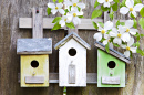 Three Little Birdhouses