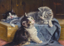 Three Kittens on a Blue Blanket