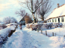 Winterscape with an Elderly Woman