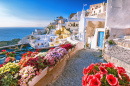 Traditional Houses in Santorini, Greece