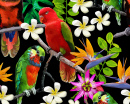 Exotic Birds and Tropical Flowers