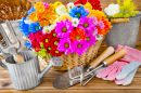 Gardening and Decorating With Flowers