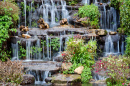 Waterfall in the Garden