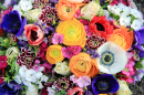 Bouquet with Ranunculus and Anemones