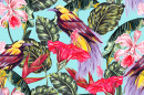 Exotic Birds and Flowers