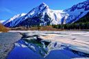 Great Alaskan Wilderness
