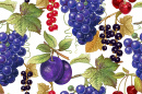 Grapes, Plums, Cherries and Berries