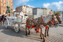 Horse Carriages, Krakow, Poland