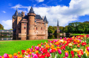 Castle da Haar and Blooming Tulips, Holland