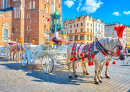 Horse Carriage in Krakow, Poland