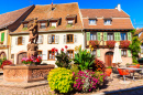 Kintzheim, Alsace Wine Route, France