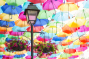 Colorful Umbrellas in Agueda, Portugal