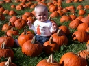 CJ in the Pumpkin Patch